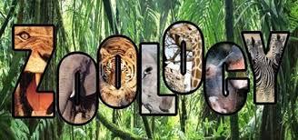 nuquestionbank zoology